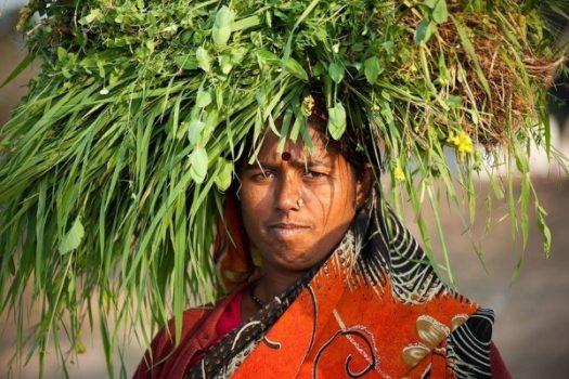भारतीय किसान, महिला