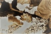महात्मा गांधी की पार्थिव देह