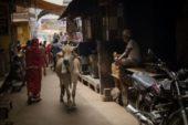हजारों वर्षों से निरंतर परिवर्तनशील भारतीय सभ्यता में कुछ भी एकवचन हो ही नहीं सकता है